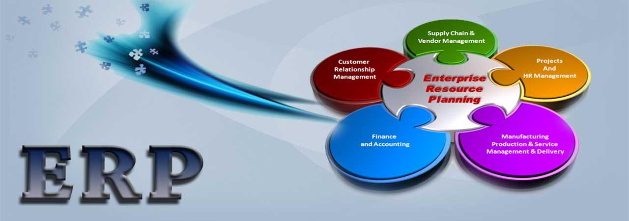 Portal/ERP Development